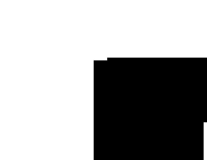 fehér és fekete méhsejtek